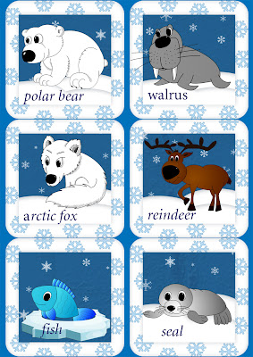 arctic animals english flashcards