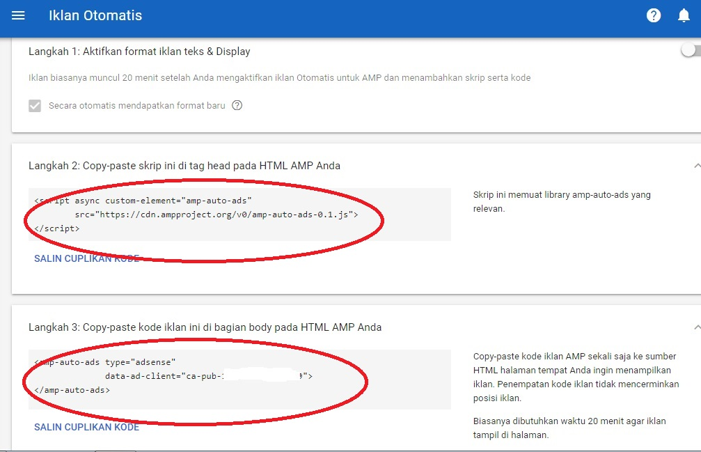 Cara Mudah Memasang Iklan Otomatis Auto Ads Google Adsense Valid AMP