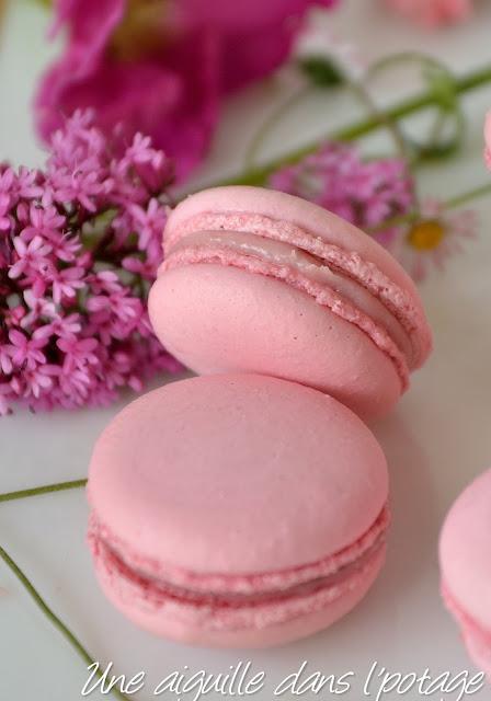 Macarons à la fraise de Christophe Felder