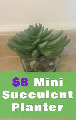 http://fixlovely.blogspot.ca/2013/11/8-mini-succulent-planter.html