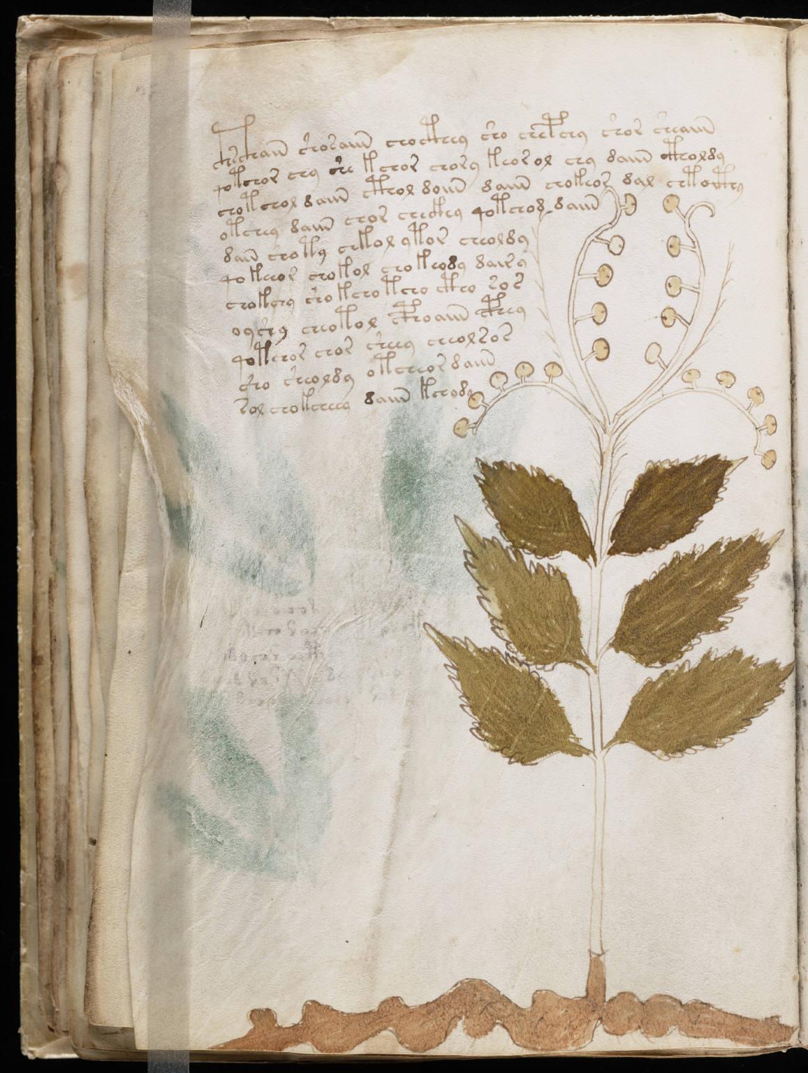 manuscrito058