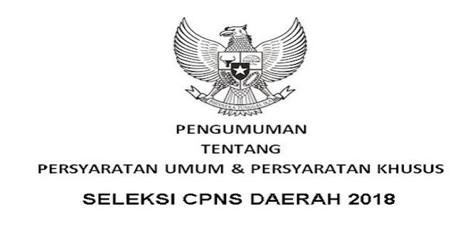 Resmi!! Persyaratan Umum dan Khusus CPNS 2018