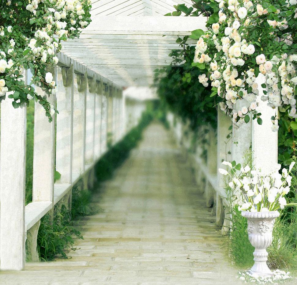 Fondos para fotos jardin perfecto para sesion fotografica - Fotos de jardines ...
