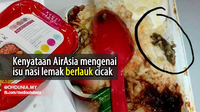 Inilah Kenyataan AirAsia Mengenai Dakwaan Nasi Lemak 'Berlauk' Cicak