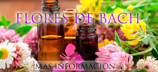 http://www.almasaranterapiasycursos.com/2018/02/FLORES-DE-BACH.html