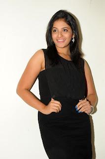 Anjali Stills At Journey Movie Audio Launch CF 010.jpg