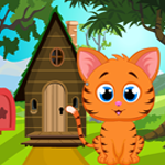 Games4King Cute Kitten Rescue Walkthrough