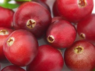 cranberry fruit images