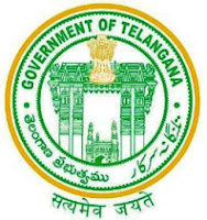 TS Inter 2nd Year Results 2016 IPE, BIE Senior Intermediate Result Telangana bie.telangana.gov.in