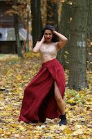 Rakul Preet Singh Stills from Winner Movie TollywoodBlog