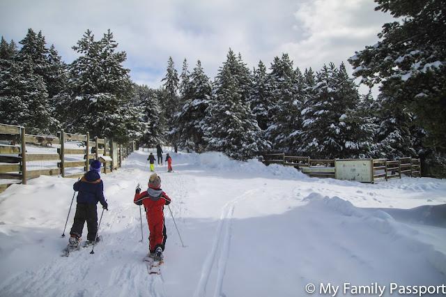 Actividades Andorra invierno