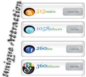 http://2.bp.blogspot.com/-XngBUqxUeSw/T9DTT4_0bLI/AAAAAAAAA1k/0yvHGvMxkw0/s1600/btunique+social+subscribe.jpg
