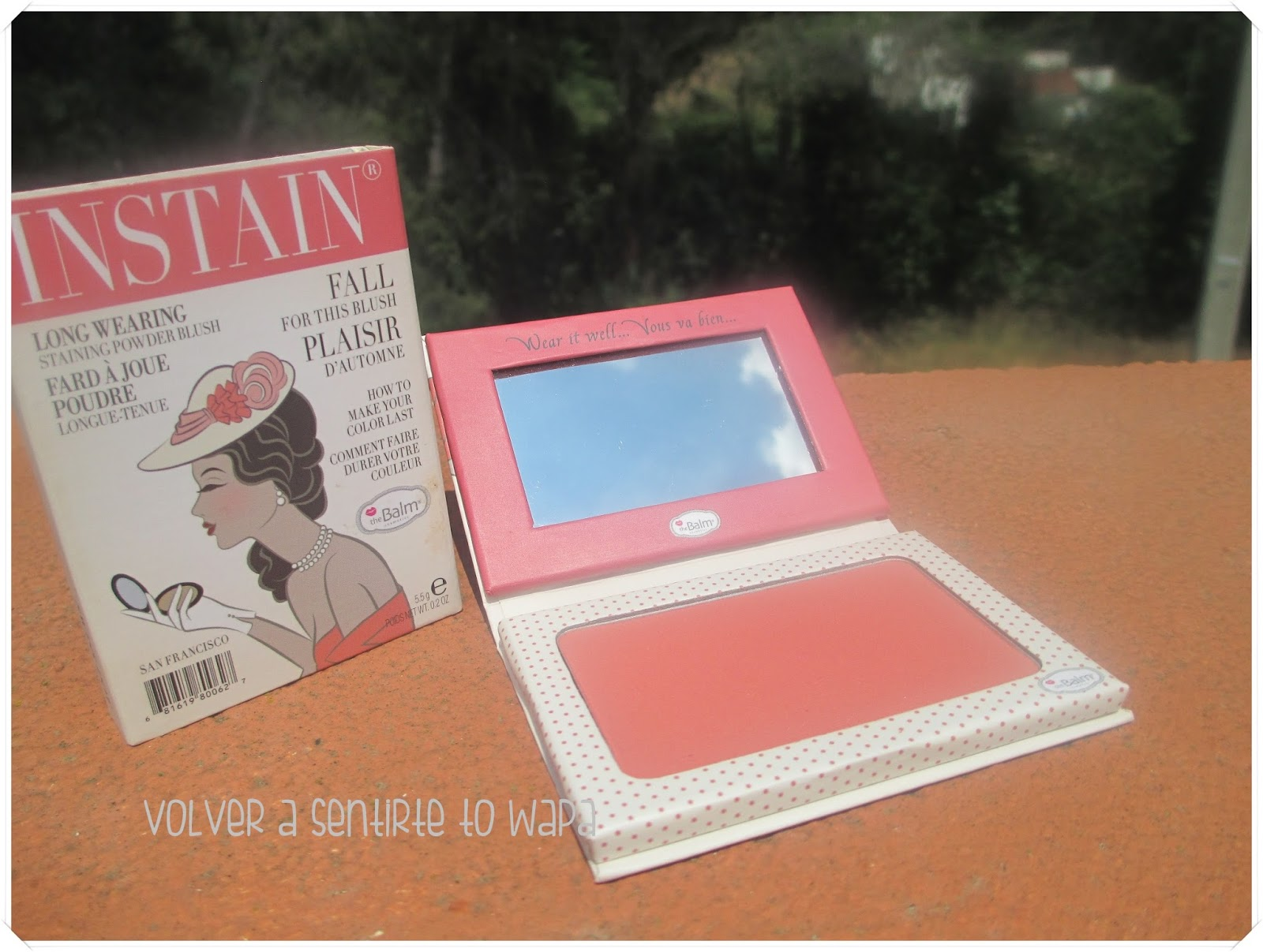 The Balm - Colorete Swiss Dot