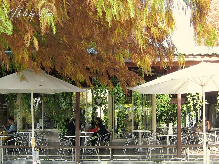 【彰化田尾】全得玫瑰園。隱身鄉間小路的歐式庭園咖啡廳