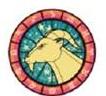 ascendencia em capricornio
