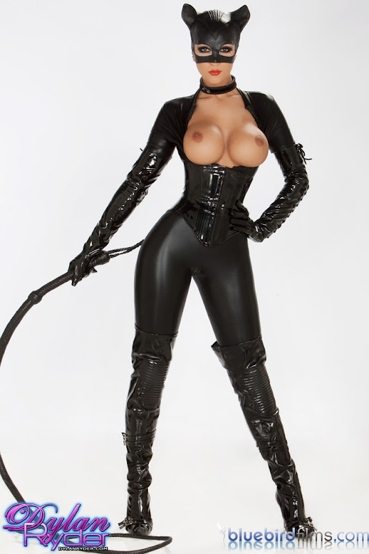 Catwoman Tits 83