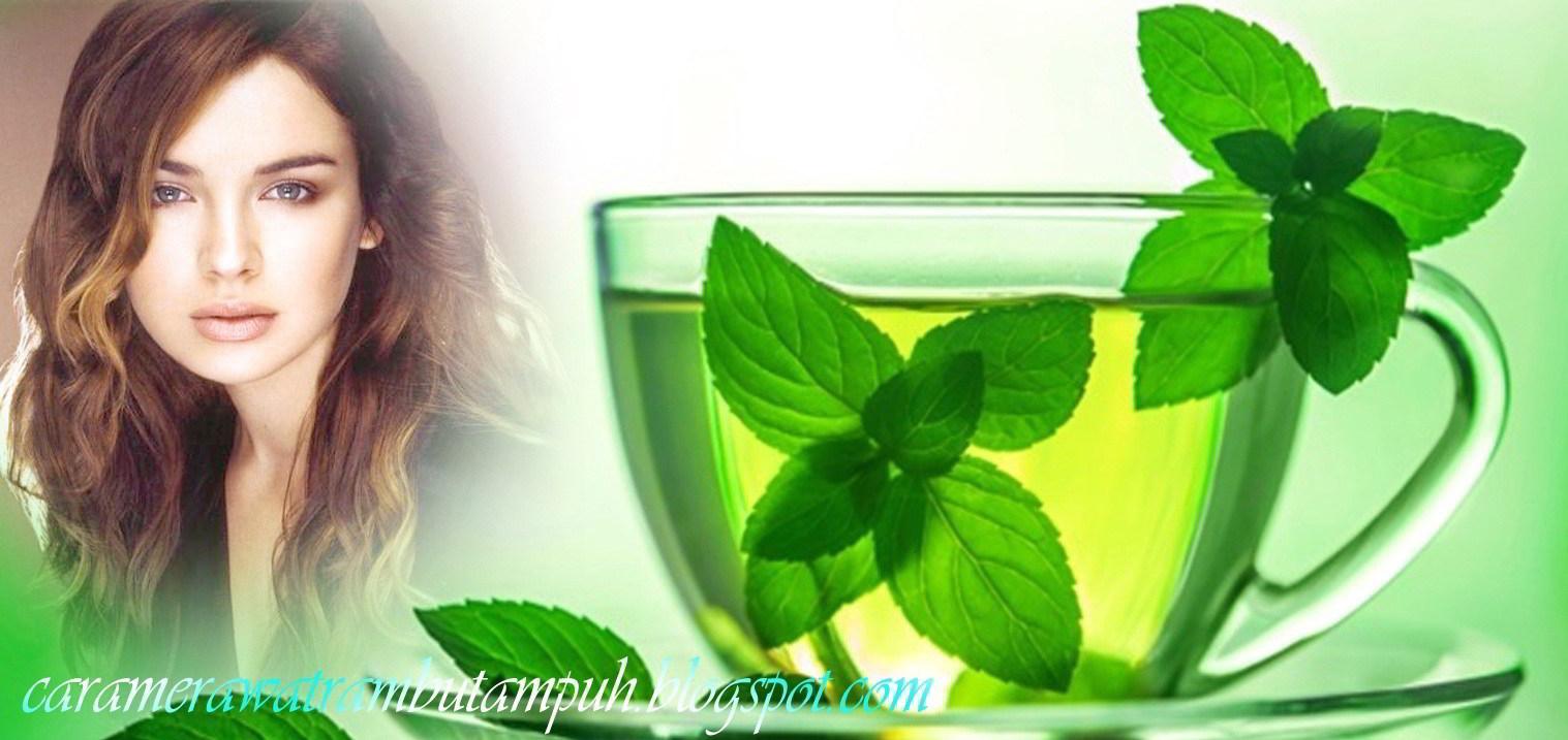 Cara Merawat Rambut Secara Alami dengan Teh hijau