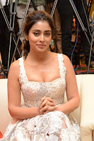 Shriya Sharan in Gorgeous Sleeveless Glittering short dress at Paisa Vasool audio success meet ~  Exclusive Celebrities Galleries 057.JPG