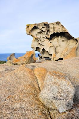 袋鼠島Flinders Chase National Park, Remarkable rock