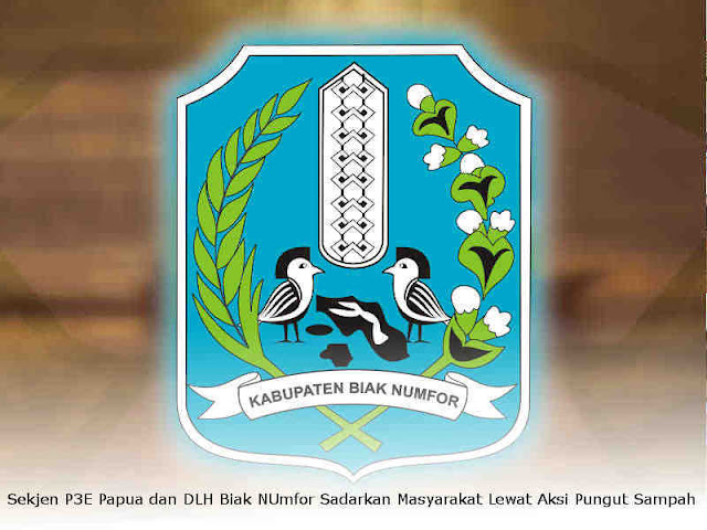 Sekjen P3E Papua dan DLH Biak NUmfor Sadarkan Masyarakat Lewat Aksi Pungut Sampah