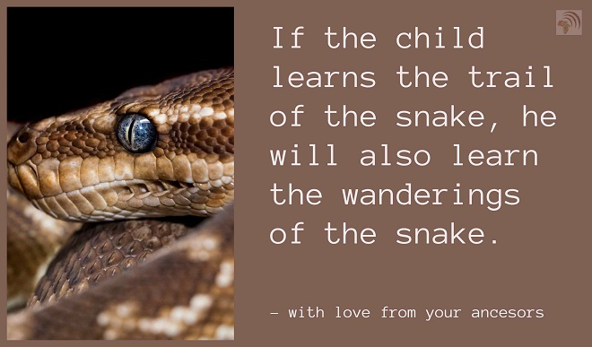 If the child learns the trail of the snake, he will also learn the wanderings of the snake.