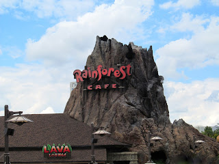 The Rainforest Cafe in Disney Springs