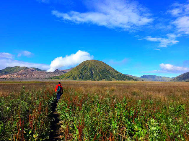 "Mt Bromo Tour from Surabaya, Mt Bromo Tour from Bali, Mt Bromo Tour from Banyuwangi, we offer best price tour holiday to Mt Bromo Volcanoes east java, for enjoy the ""Sunrise"" in Mt Bromo volcanoes, Bromo Tour, visit to mount bromo east java, ijen morning tour, bromo tour from bali, bromo ijen tour, bromo tour from surabaya, bromo trip from bali , bromo mountain east java, bromo trip from surabaya, sunrise in bromo mountain, ijen crater, ijen crater tours, ijen Tour Package, kawah ijen tours, ijen tour and travel banyuwangi, ijen volcano tour, ijen volcano Indonesia, ijen volcano from banyuwangi, ijen travel, kawah ijen banyuwangi, kawah ijen tour, kawah ijen trip, ijen crater tour, ijen crater blue fire, ijen crater guesthouse, ijen crater tour from banyuwangi, ijen crater tour bali, ijen crater tour price, ijen crater night tour, kawah ijen night, ijen blue fire, bluefire ijen crater, blue fire ijen tour , blue fire kawah ijen, ijen blue flame tour, blue flame gunung ijen, blue flame sulphur ijen, blue flame gunung ijen, blue flame kawah ijen volcano."