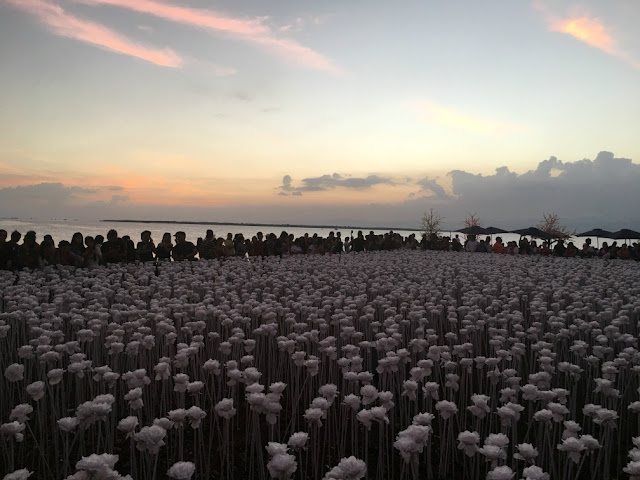 10000 roses before they are lighted at 10000 Roses Cafe Cordova Cebu