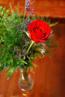 beautiful single red rose in vase