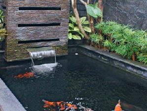 membuat kolam air di taman minimalis