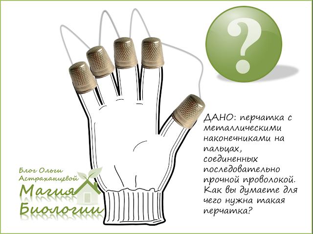 ТРИЗ-загадка-инструмент-для-уборки-облепихи-перчатка