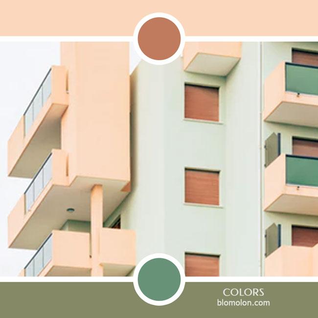 variedad_en_color_color_50