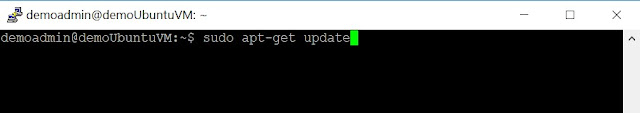Execute Update package command