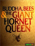 Buddha, Bees and the Giant Hornet Queen