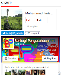 Gambar Model Kedua Membuat Widget 3 in 1 (Fanspage FB, Google+, Follower Twitter)