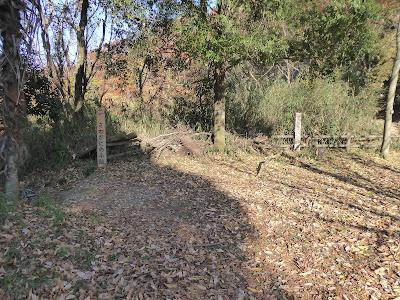 白旗池 サワガニの小路とアリジゴクの小路