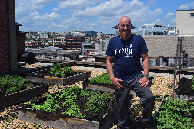 Bartender Brendan Ambrose in the Firefly rooftop herb garden.