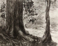 Charcoal study work of a scene from Karnala Bird Sanctuary by Manju Panchal