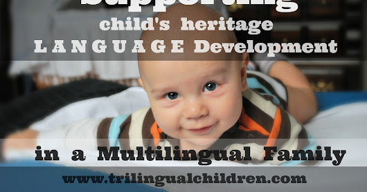 Best Practices for Supporting Child's Minority Language Development in a Multilingual Family