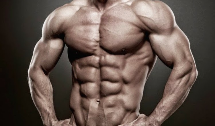 Best Muscle Building Foods That Help For Your Strong Muscles & Ripped Abs