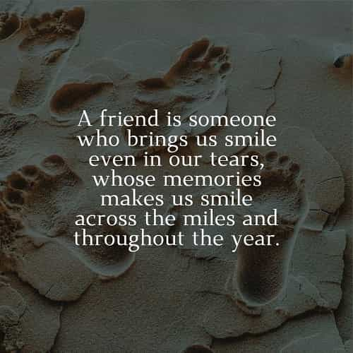 24+ Friendship quotes and sayings, short best friend quotes