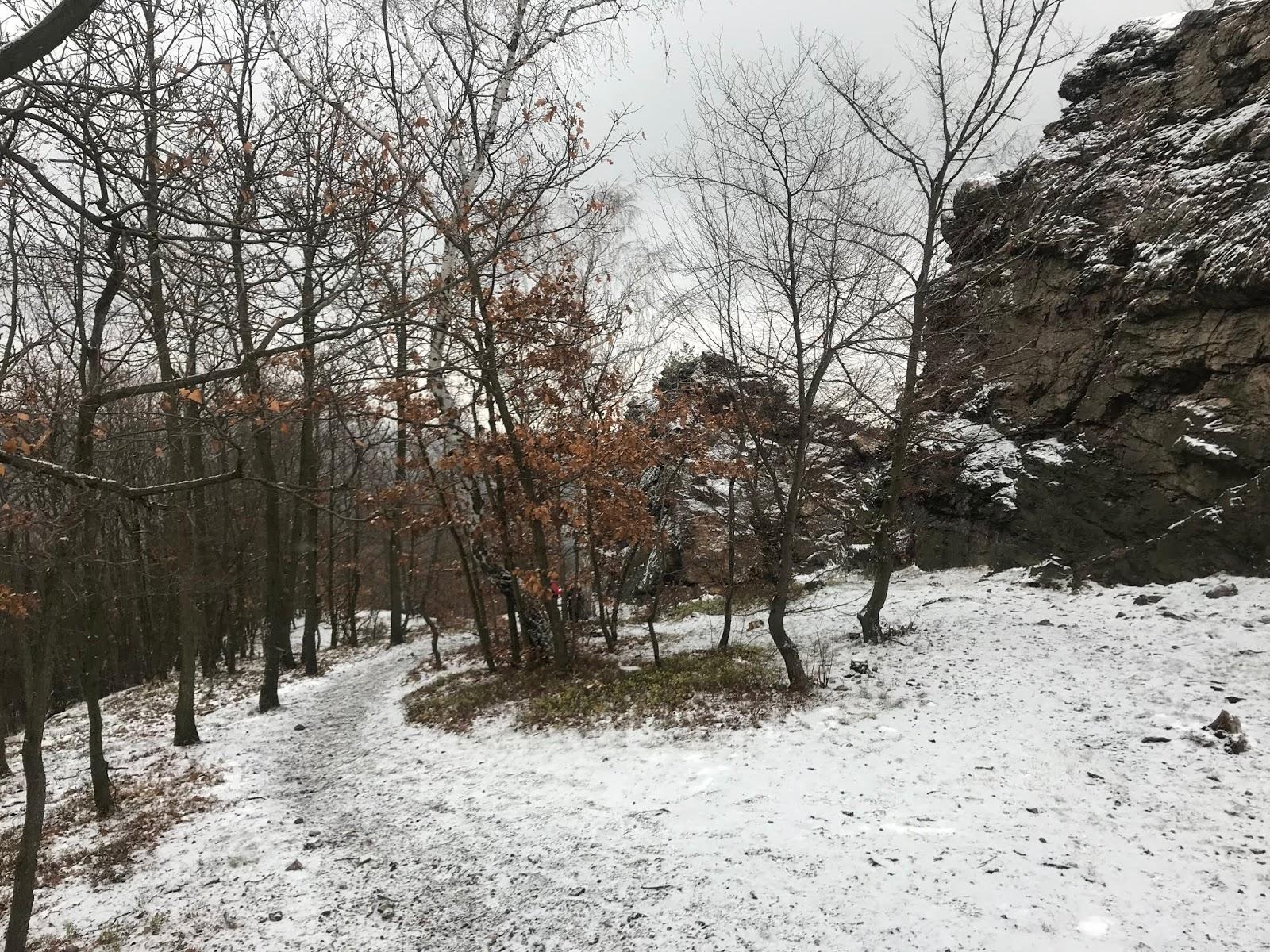1beeb7b6c Nastastie po par km zase vchadzame do lesa a prichadza stupanie na Karasovu  vyhlidku, v ktorom si mozme oddychnut. Vzdy si pri tomto spomeniem na  Honzu, ...