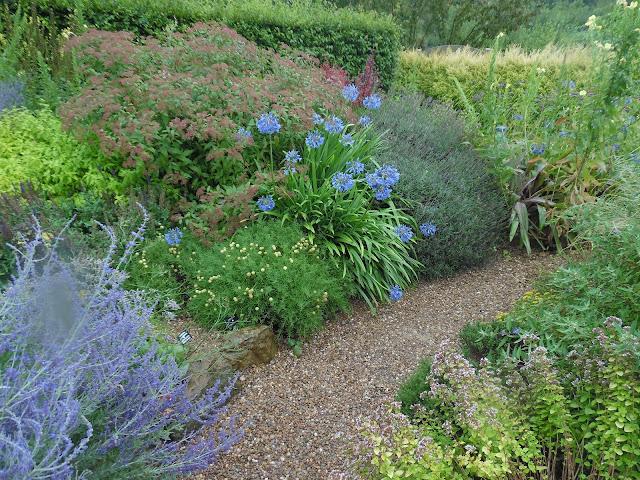 Mediterranean Garden, rabata bylinowa
