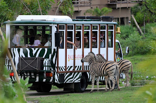 Bali Safari and Marina Park Package Price