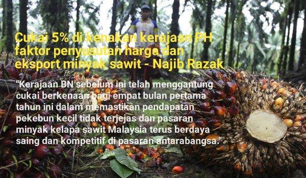 Cukai 5% di kenakan kerajaan PH faktor penyusutan harga dan eksport minyak sawit - Najib Razak