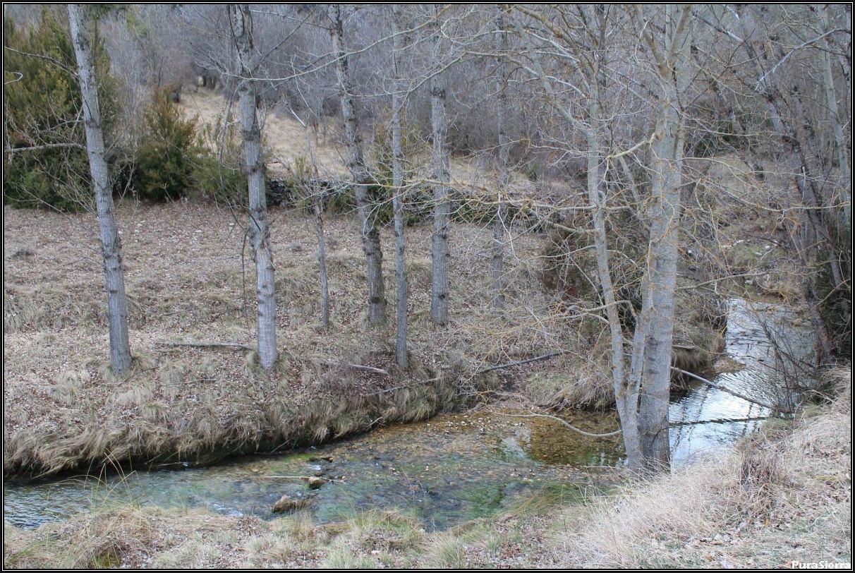 Rento De La Peraleja. Río Zafrilla