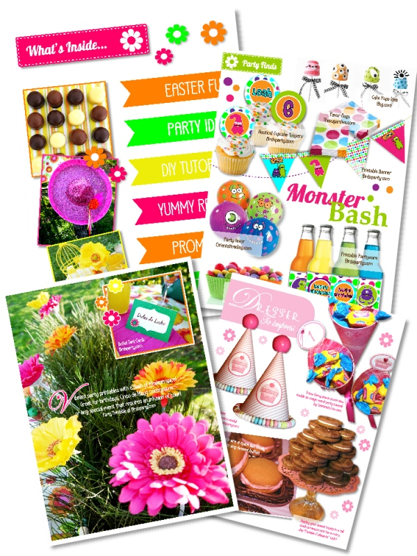 Birds' Party Magazine | Styled by You Contest
