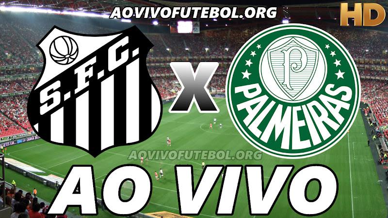 Assistir Santos vs Palmeiras Ao Vivo HD