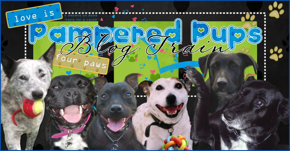 Pampered Pups Blog Train
