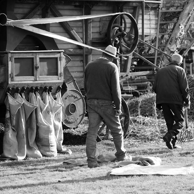 Fête de la galette à pipriac 2010